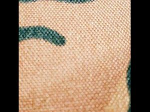 maskirni 1000D najlona kordura tkanina za nahrbtnik na balističnih prsih